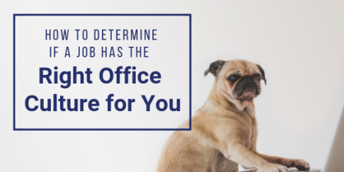 How To Determine If A Job Has The Right Office Culture For You