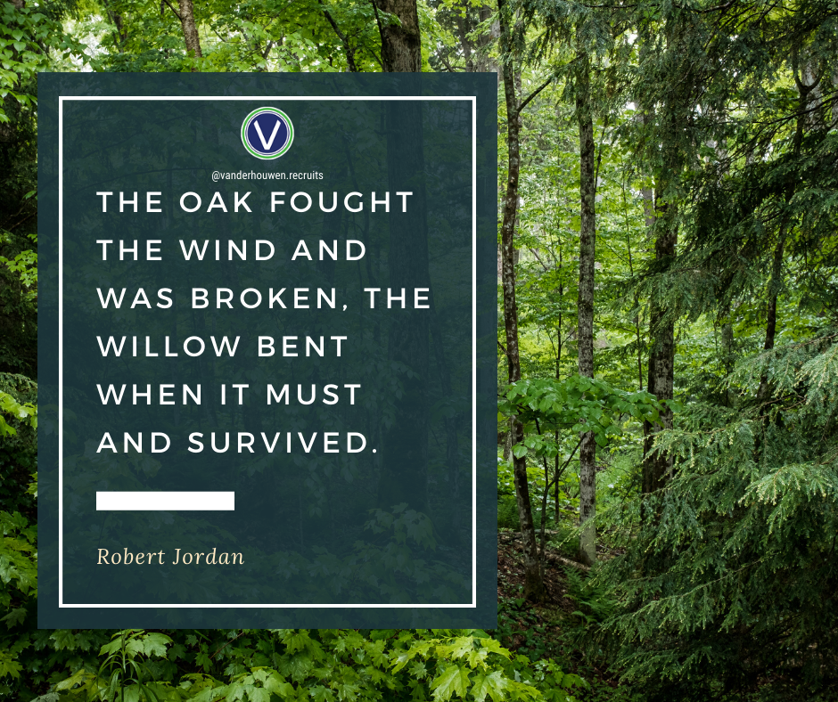 "Robert Jordan quote over forest scene. ""The oak fought the wind and was broken. The willow bent when it must and survived."""